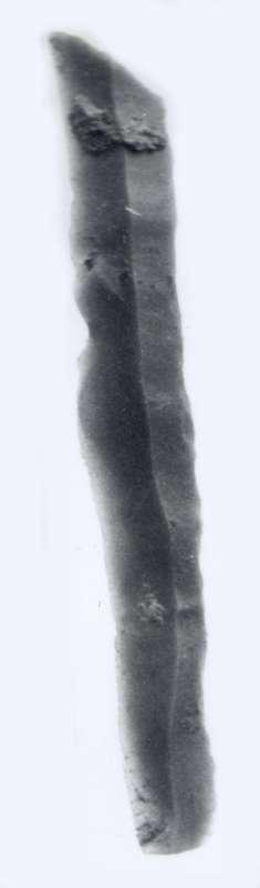Microlith