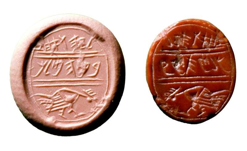 Stamp seal: