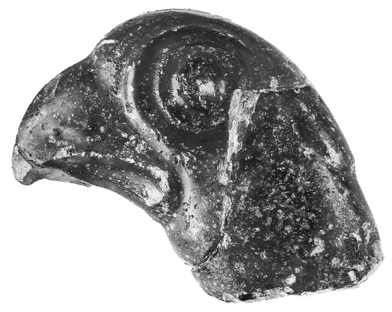 Head of a bird (hawk?), probably a handle or ornament from an elaborate stone or metal vessel