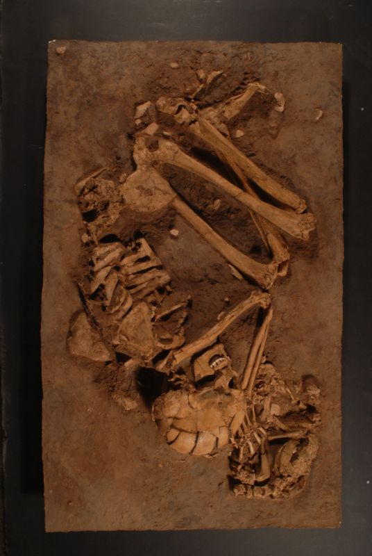 Woman buried with dog (cast)