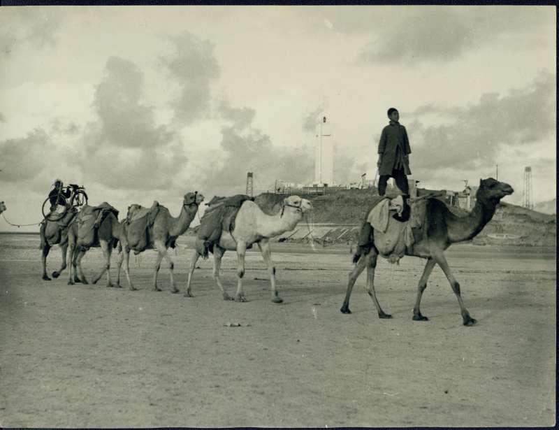 חוף הים, צפון תל-אביב