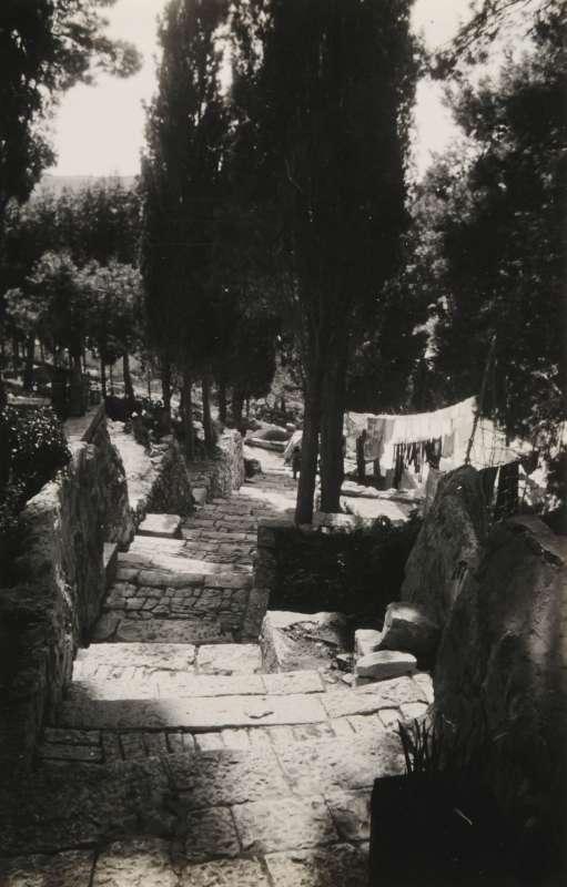 המדרגות למנזר הרוסי, עין כרם, ירושלים