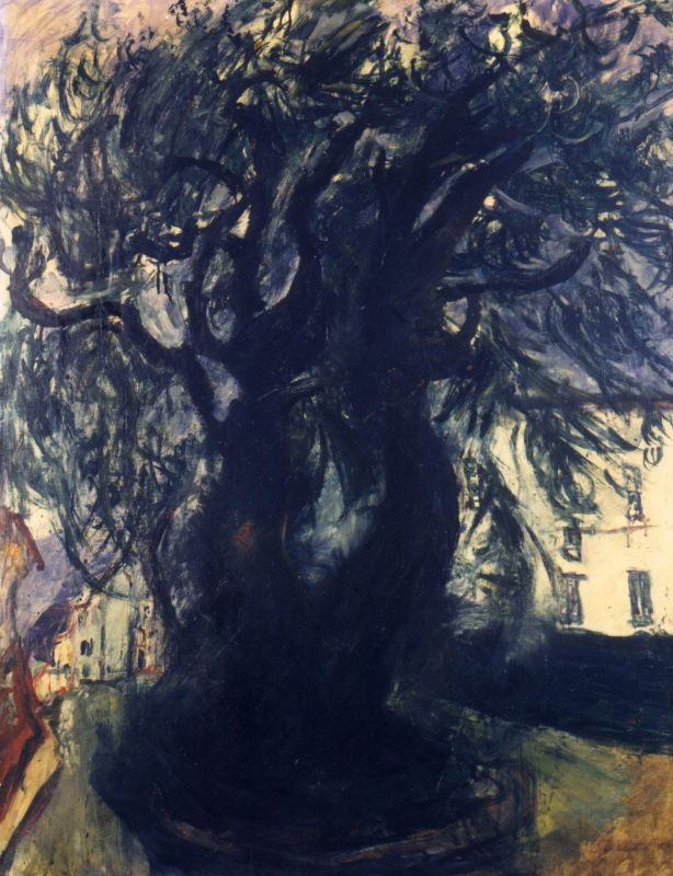 Tree in Vence