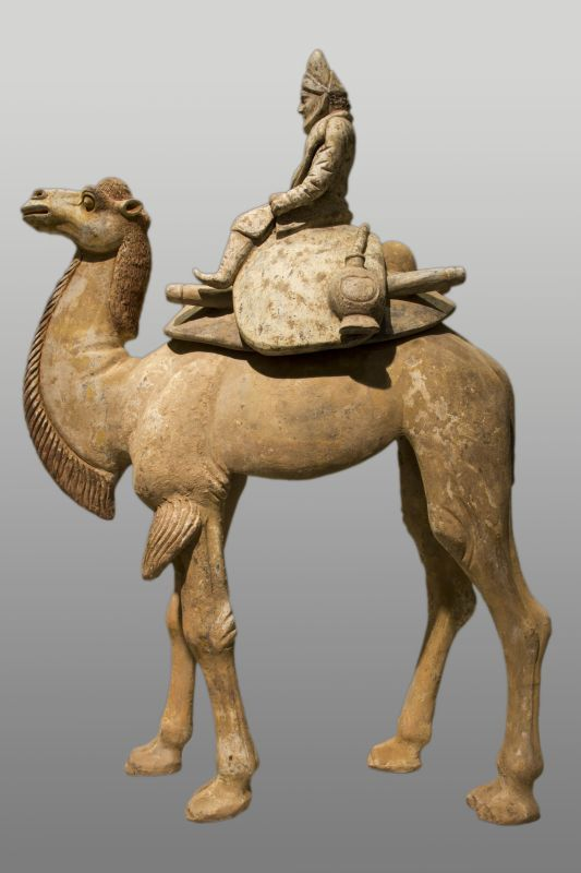 Middle Eastern merchant riding a Bactrian camel