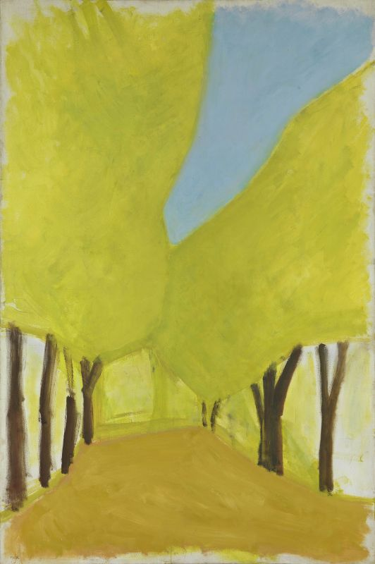 Carob Tree Boulevard