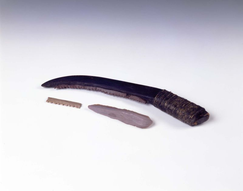 Reconstructed sickle