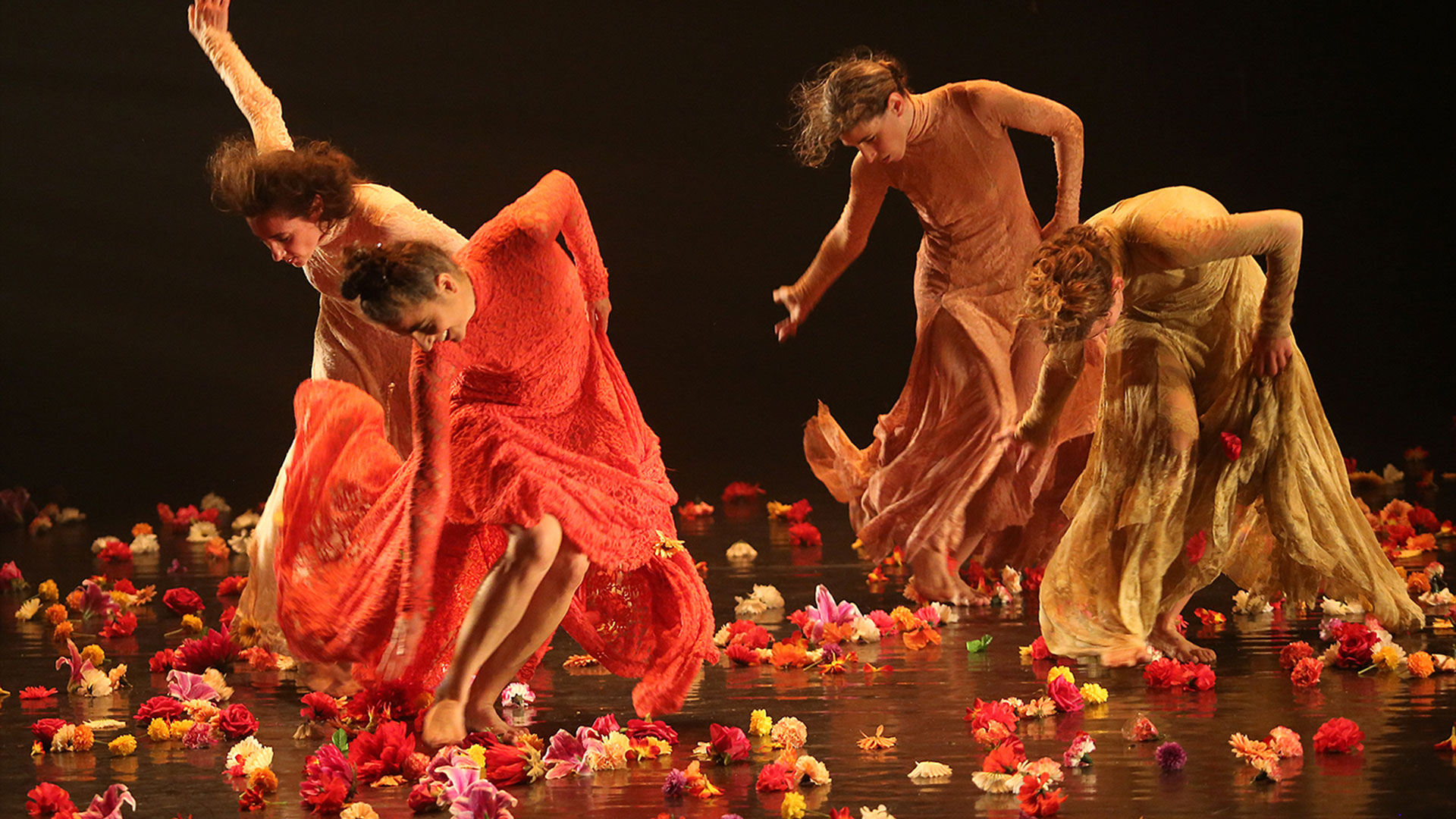 Dance in the Exhibition