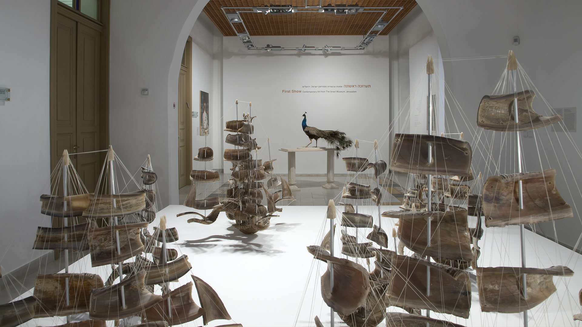 First Show, Contemporary Art from The Israel Museum, Jerusalem | The