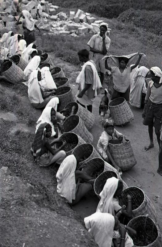 Ceylon (Sri Lanka), tea workers